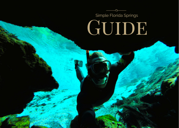 A Simple Guide To Some Of The Most Amazing Springs In Florida